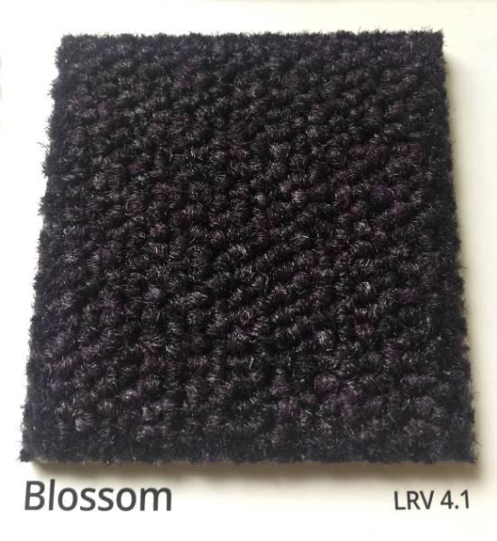 Dahlia Blossom Black Carpet Colour Swatch