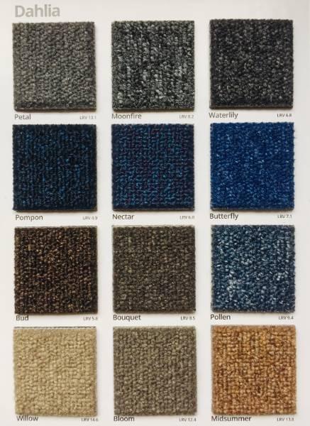 Dahlia Cactus Carpet Colour Swatch