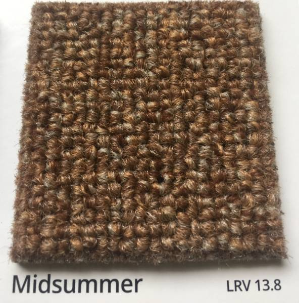 Dahlia Midsummer Brown Carpet Colour Swatch